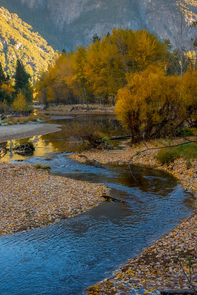 SCurve Reflections Of Autumn - Lower Yosemite Valley, Yosemite National Park, California
