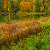 Autumn Color Next To Still Pond - Vermont