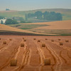 Stacks And Stacks Of Hay Bales_ - Palouse, Eastern Washington
