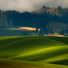 Rolling Shades Of Light Over The Hills - Berger-Danielson Road Balsam Crossroads, Palouse, Idaho