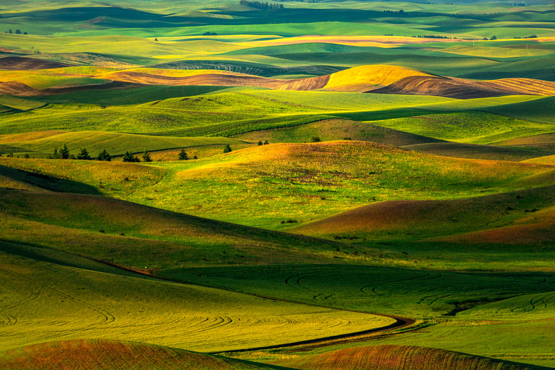 Myriad Of Rainbow Colors From Steptoe Butte - Steptoe Butte State Park, Palouse, WA