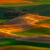 Rolling Colors From Steptoe Butte - Steptoe Butte State Park, Palouse, WA