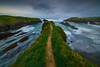 The Trail That Leads Into Eternity - Mendocino Headlands, California