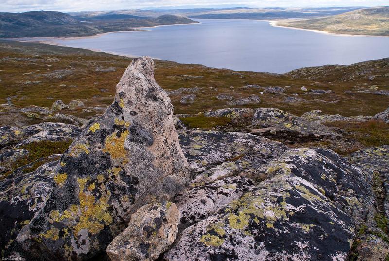Mår, Hardangervidda