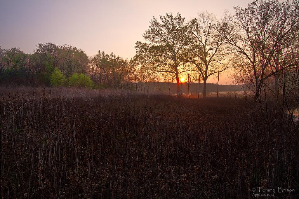Truman Lake Sunrise © Tommy Brison Apr 1st, 2012