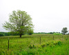 Where the Strader Farm stood