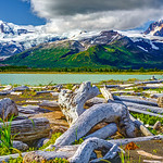 """Hallo Bay with Glacier and Driftwood"" Here is one of my landscape shots from Hallo Bay in Katmai National Park & Preserve The Glacier and mountains were fantastic and I was imagining being there at sunrise or sunset. I believe the peak on the right is Devil's Peak and had nice red rocks that were lit up. The driftwood was everywhere with detailed textures and twists. I am ready to go back! — at Katmai National Park & Preserve."