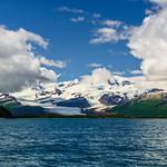Katmai-Alaska-Kukak-Bay-Grizzly-Brown-Bears-_D8X0147