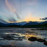 Katmai-Alaska-Kukak-Bay-Grizzly-Brown-Bears-_D8X0345