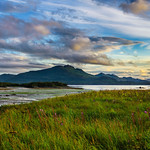 Katmai-Alaska-Kukak-Bay-Grizzly-Brown-Bears-Katmai-Sunsest-Katmai-Wilderness-Lodge-Alaska_J700120