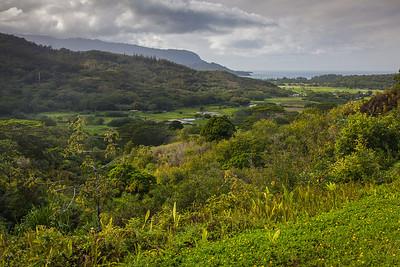 Hanalei Valley, Kauai, HI.