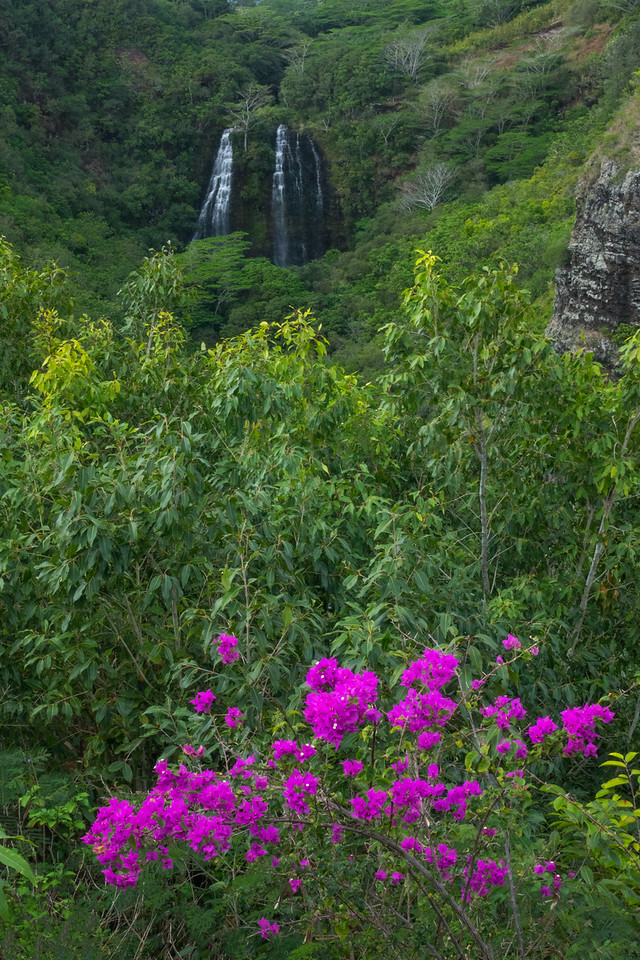 Opaeka Falls, Kauai, HI.