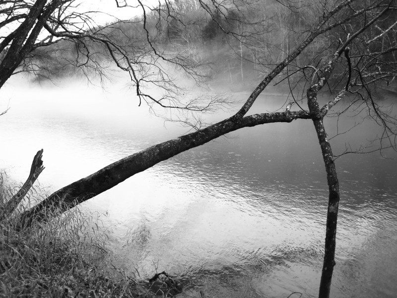 12 January 2013.  Cumberland River, McCreary County, KY.