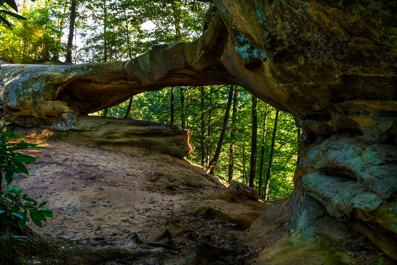 """Princess Arch is in the Red River Gorge National Geological Area in Kentucky. It is the major feature of trail #233 and spans about 40 ft.<br/><br/><i><A href=""""http://chuck-de-la-rosa.artistwebsites.com/featured/princess-arch-chuck-de-la-rosa.html"""" target=""""_blank"""">Click here to order prints of this photo!</A></i>"""