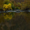 Kern River Fall 2009 :