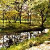 Korea_2010 10_4490111_prv