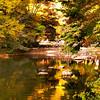Korea_2010 10_4489863_prv