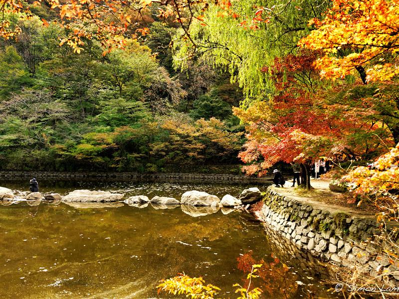 Korea_2010 10_4489801_prv