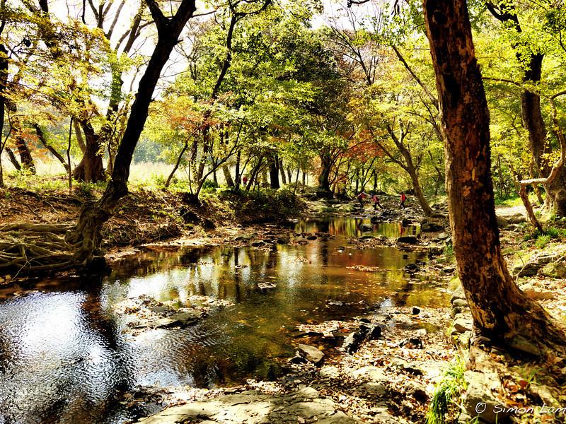 Korea_2010 10_4490119_prv