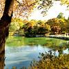 Korea_2010 10_4490278_prv