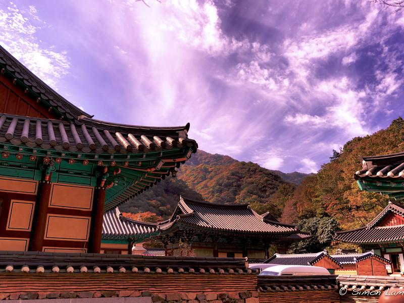 Korea_2010 10_4489729_prv