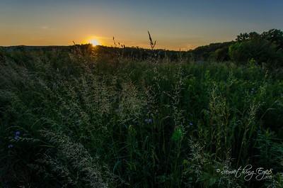 Krumsville Sunsets