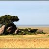 TANZANIA 2010/10