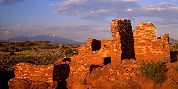 Indian Ruiens1224
