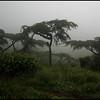 TANZANIA  2010/04