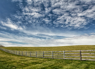 The Field Fence
