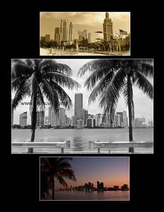 """""""Miami"""""""