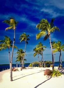 Isla Morada, Florida