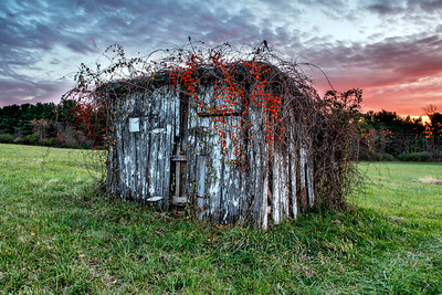 Apple Barn Shed