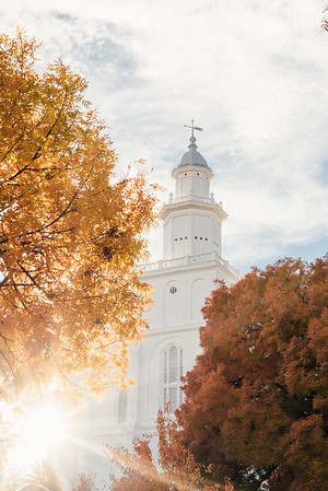 St. George Utah Temple in Fall