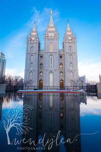 wlc swans and slc temple11February 06, 2016