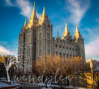 wlc swans and slc temple37February 06, 2016-Edit-Edit-2