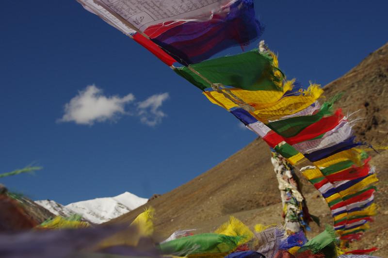 Tibetean prayer flags in the Suru Valley