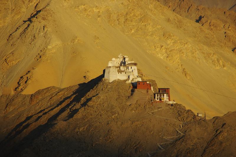 Namgyal Tsemo Gompa, Leh