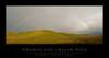 Rainbow8301-14WF