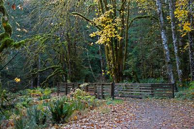 Spruce Railroad Trail