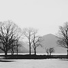 Flooded Field, Buttermere, The Lake District