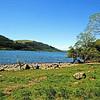 Mirehouse & Garden, Bassenthwaite Lake (nr Keswick)