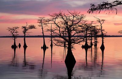 Lake Mattamuskeet sunset 12-20-12