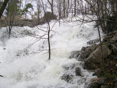 Lake Rayburn 2008 (18)