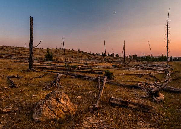 Forest fires in the region created colourful sunsets - this one near Fountain Flat Road (Yellowstone National Park)