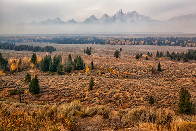 Grand Teton National Park view