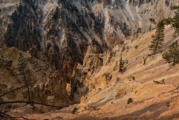 A scene from Artist Point Trail. Yellowstone National Park.