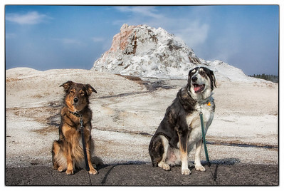 Daisy and Kavi pose in front of White Dome Geyser on Firehole Lake Drive in Yellowstone National Park