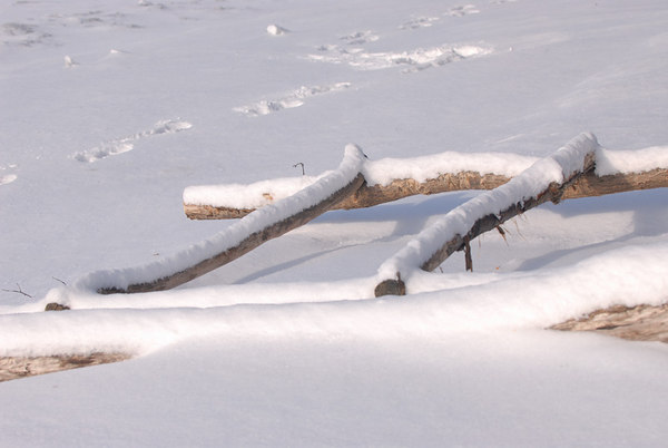 Lake Superior Northshore