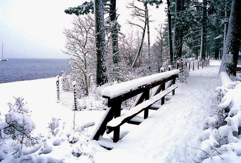 Zepher Cove Lake Tahoe 1999